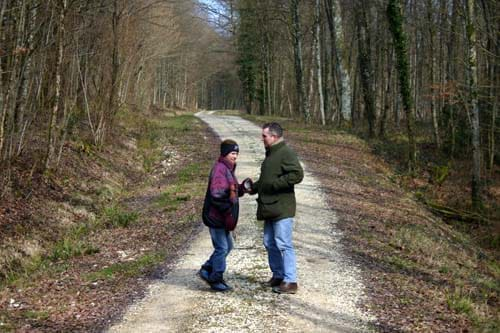 Local walks in the Argonne forest